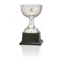 Trofeo Golf Copa Baño de Plata